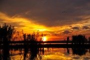 Romania-Dobrogea-and-Danube-Delta-038