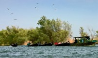 Romania-Dobrogea-and-Danube-Delta-255