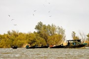 Romania-Dobrogea-and-Danube-Delta-256