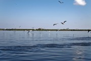 Romania-Dobrogea-and-Danube-Delta-Isac-Lake-099