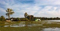 Romania-Dobrogea-and-Danube-Delta-Murighiol-167