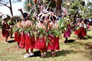 Papua-New-Guinea-Sing-Sing-Festival-087