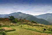 Bhutan-Punakha-and-Wangdue-Valley-047