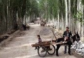 Chinas-Silk-Road-Kashgar-029