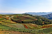 DONGCHUAN, Red Land (4)