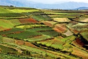DONGCHUAN, Red Land (5)