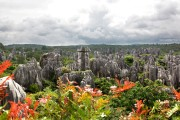 KUNMING, The stone forest (2)