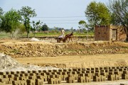 LAHORE BRICK FACTORY, BONDED LABOR (6)