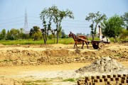 LAHORE BRICK FACTORY, BONDED LABOR (7)