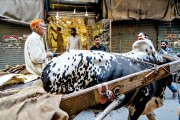 LAHORE OLD CITY - THE MARKETS (52)